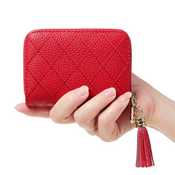 Best Style: Cynure Women's Credit Card Holder with Zipper