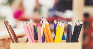 Best Pen and Pencil Cases