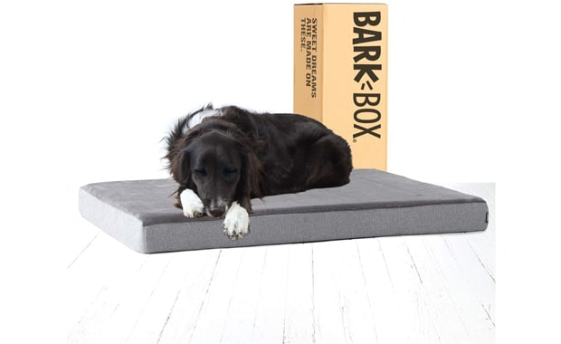 Barkbox-Memory Foam-Platform Dog Bed-Plush Mattress for Orthopedic Joint   Relief