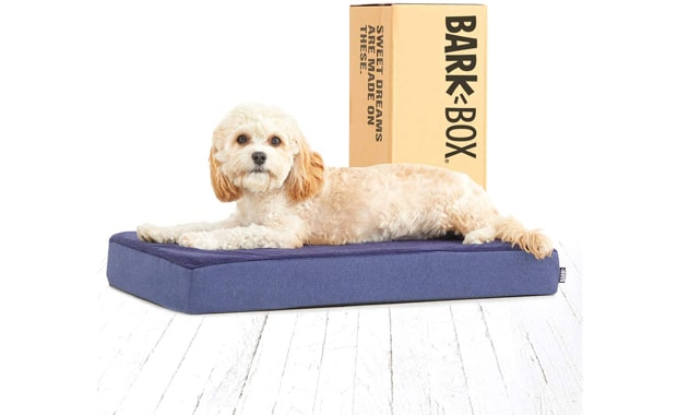 Barkbox-Memory Foam Platform-Dog Bed