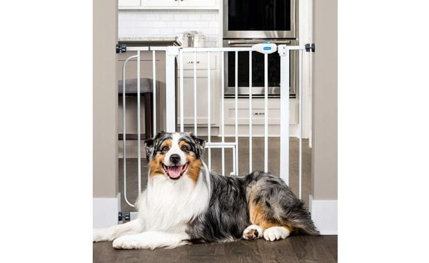 Carlson Walk Through Extra-Wide Pet Gate